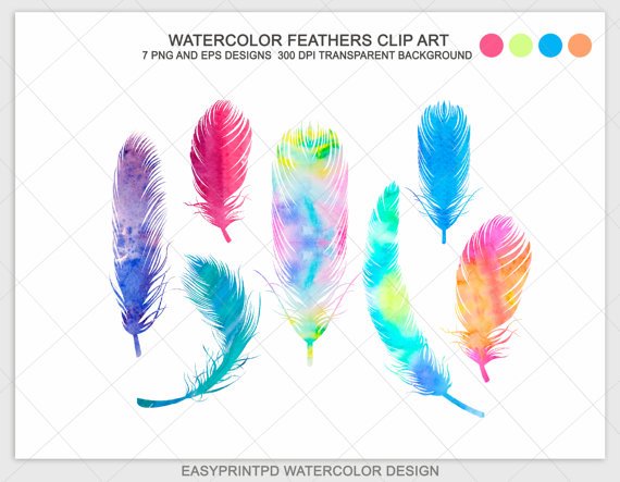Watercolor Feathers Clip Art Digital Clip Art PNG by easyprintPD.