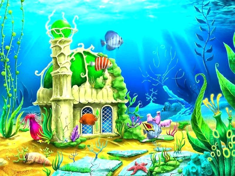 Fish Tank Wallpapers Fish Tank Background Wallpaper.