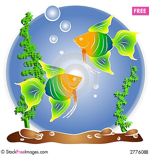 Fish Aquarium Clipart.
