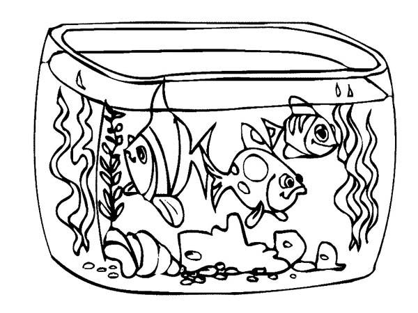 Aquarium Drawing.