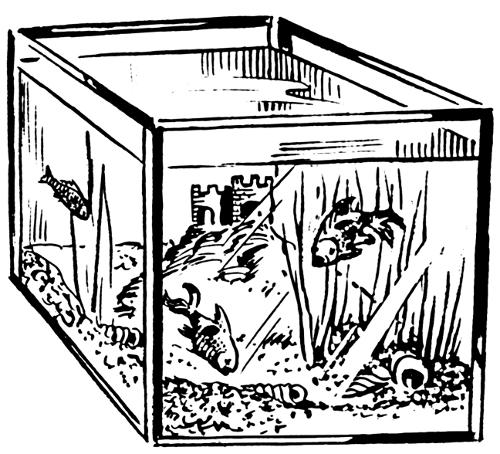 Aquarium Clip Art Download.