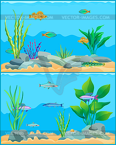 Colorful Cartoon Aquarium Fishes Set Promo Poster.