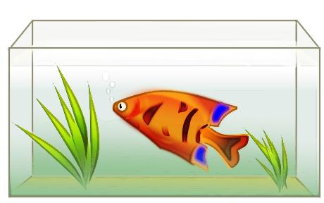 Free Aquarium Fish Clipart, 2 pages of Public Domain Clip Art.