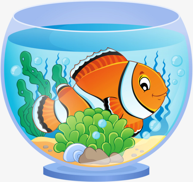Fish Tank Clipart Png.
