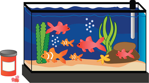 Fish Tank Vector at GetDrawings.com.