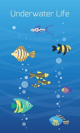 Aquarium underwater life Clipart Image.