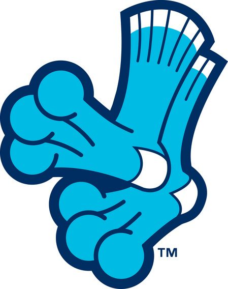 Everett AquaSox 'socks' logo.