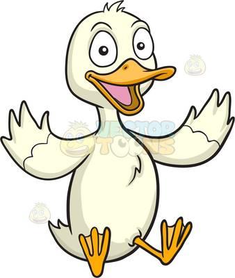 aquatic bird Clipart.