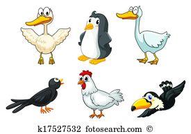 Aquatic birds Clipart Royalty Free. 508 aquatic birds clip art.