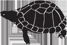 Gravemarker Clip Art Examples of Aquatic_Animals.