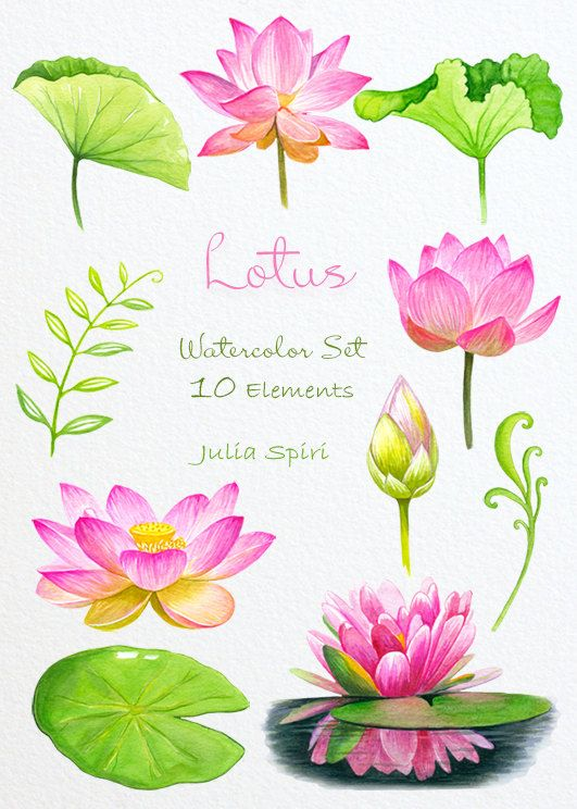 1000+ images about Watercolor Flower Clip Art on Pinterest.