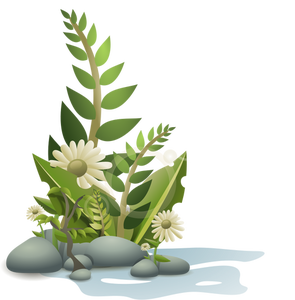 254 aquarium plants clipart.