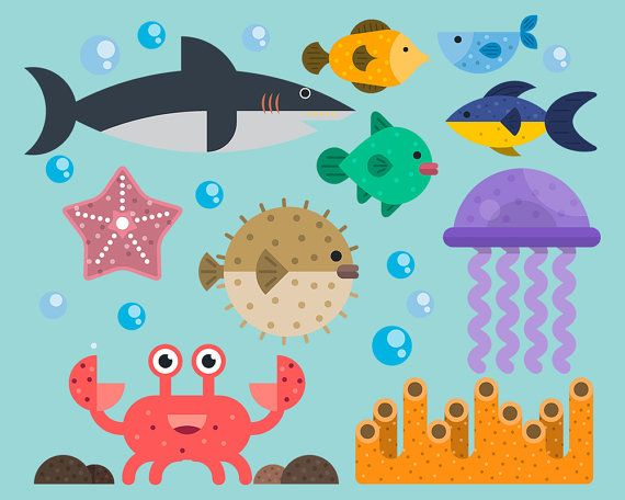 Marine Life Clipart Sea Creatures Digital Clipart by.