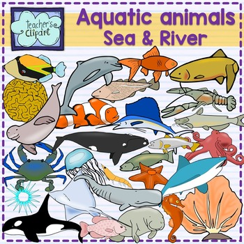 Aquatic animals (Ocean, Sea and river underwater life) clipart {Science}.