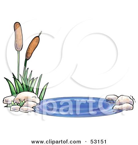 Clipart of a Cat Tail Aquatic Plant.