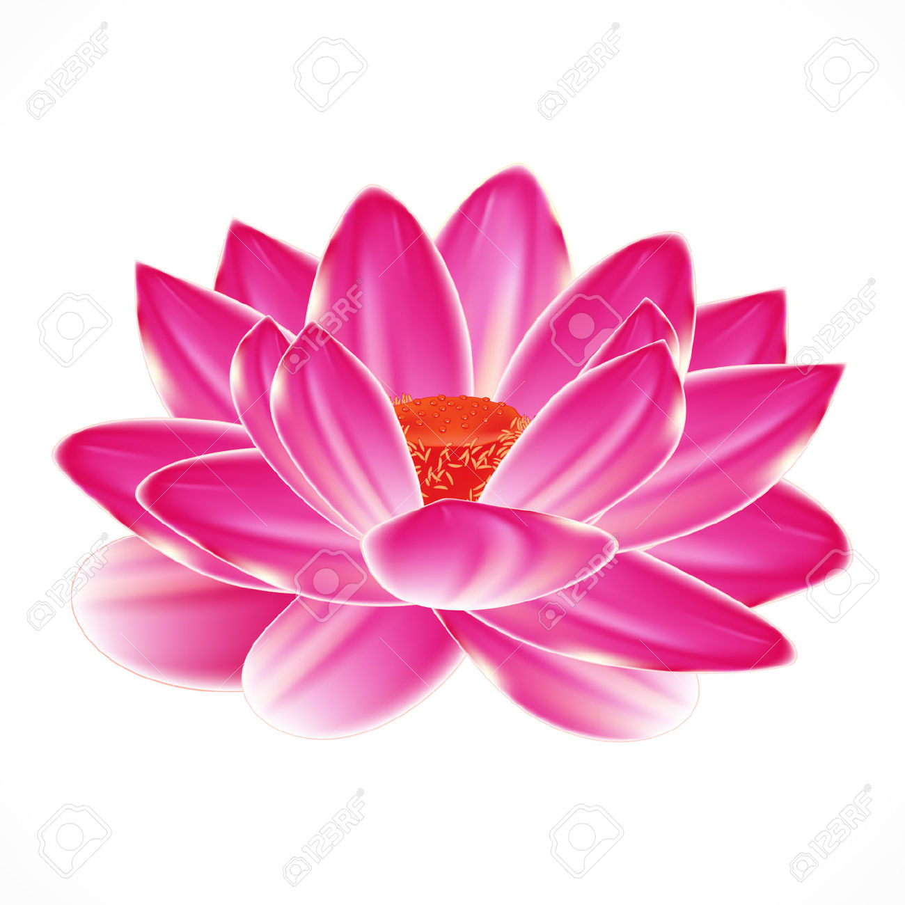 Water Lily Flower, Isolated Element To Your Spa Design. Royalty.