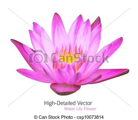 Vector Clip Art of Zen Flower Lotus. Vector Water Lily.