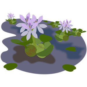 Plant clipart, cliparts of Plant free download (wmf, eps, emf, svg.
