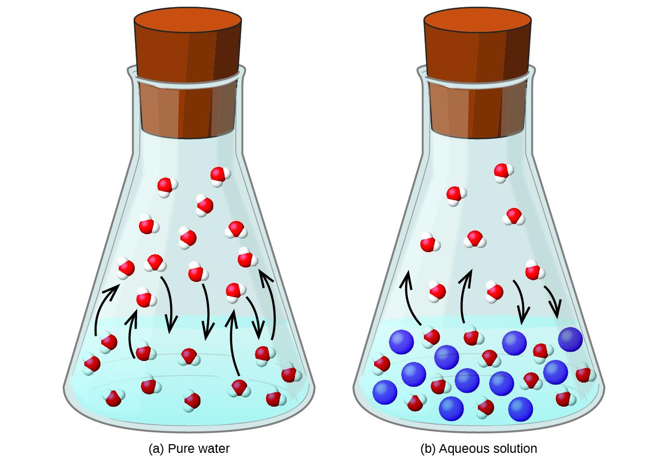 Solution Chemistry I (MCAT 2018: General Chemistry.