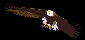 Aquila Frontale clip art Free Vector.