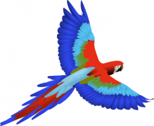 Macaw Clip Art Download.