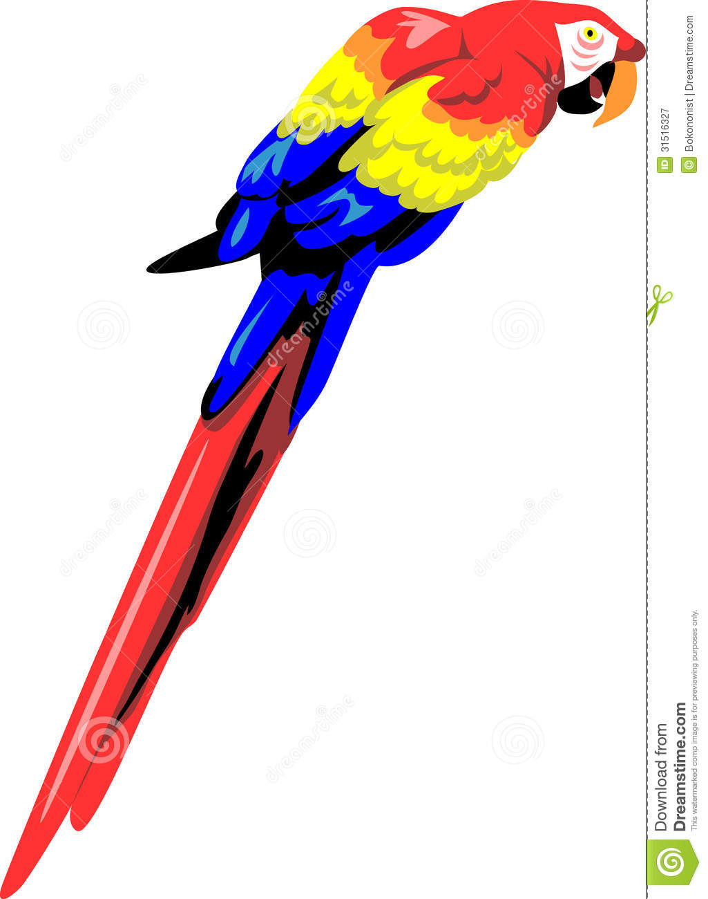 Macaw Royalty Free Stock Photography.