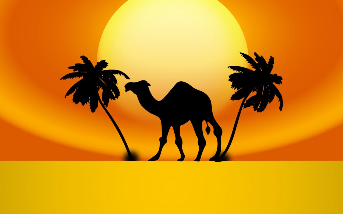 Computer Wallpaper,Silhouette,Livestock PNG Clipart.