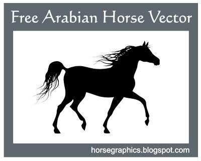 Arabian horse clip art.
