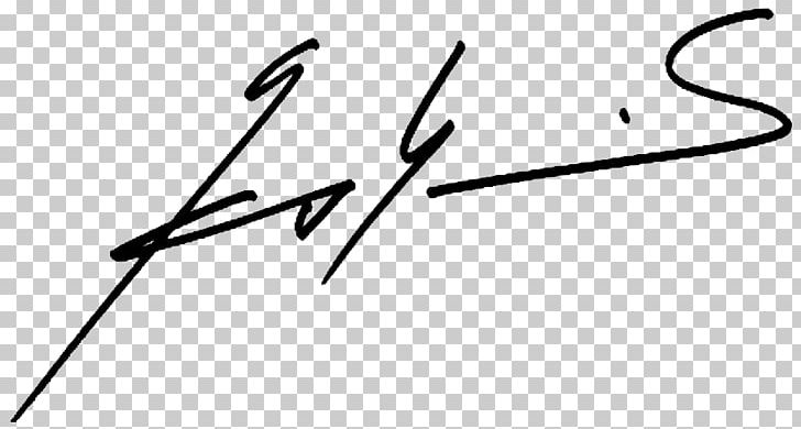 Signature Text Wikipedia Slovakia PNG, Clipart, 27 March, Angle.