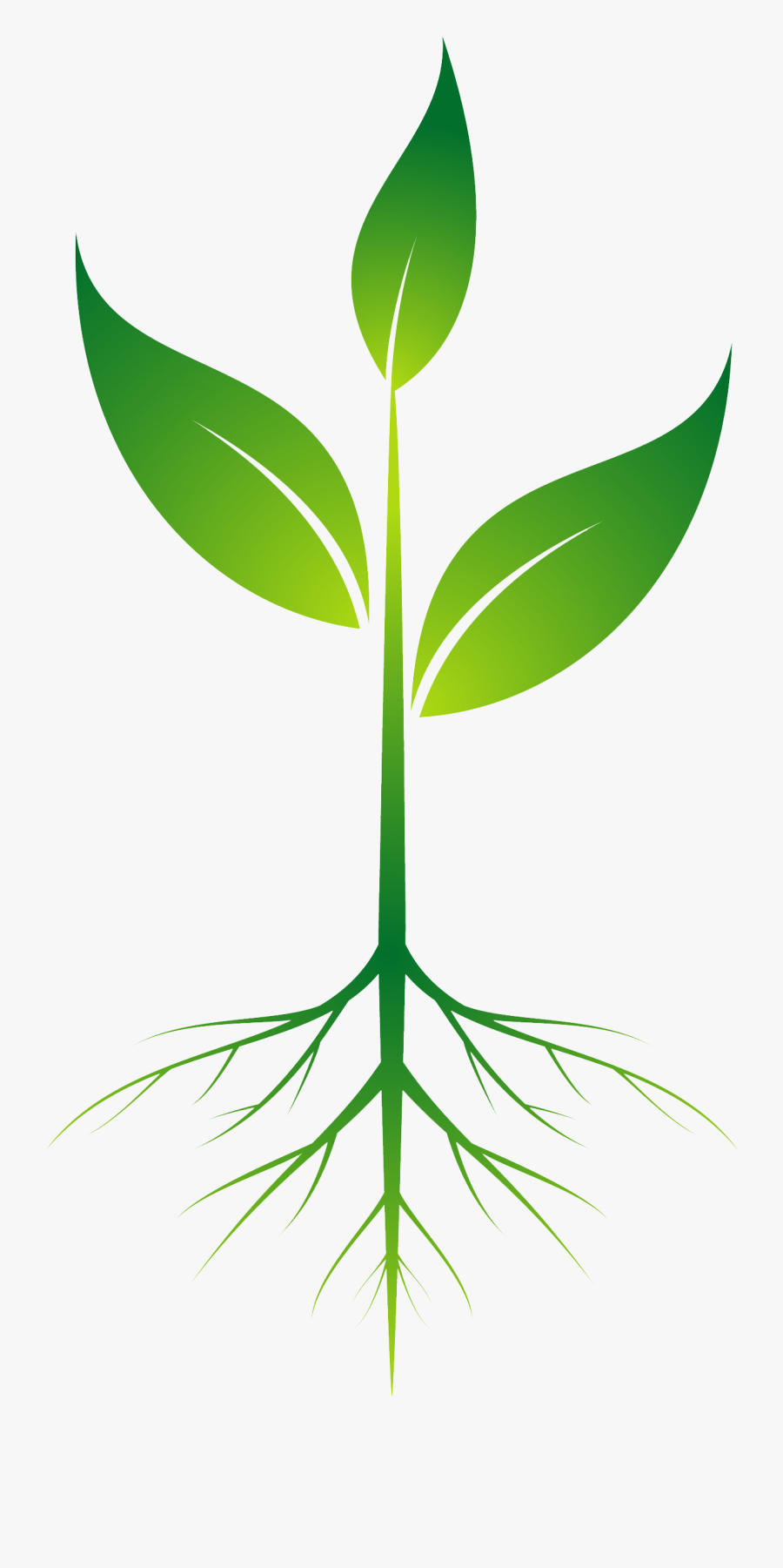Download Root Plant Clip Art.