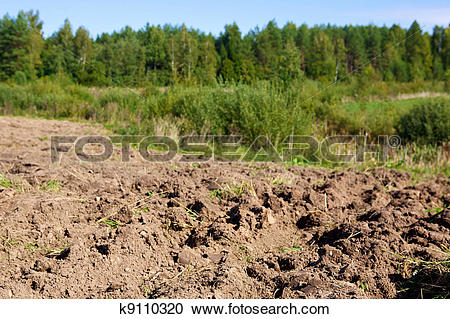 Stock Photography of arable land on forest and sky background.