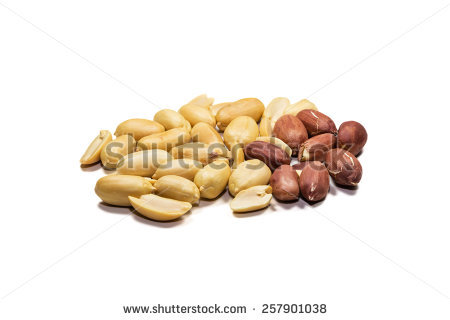 Groundnut Stock Photos, Royalty.