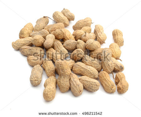 Arachis Stock Photos, Royalty.
