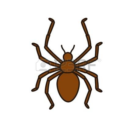 Arachne Stock Photos & Pictures. Royalty Free Arachne Images And.