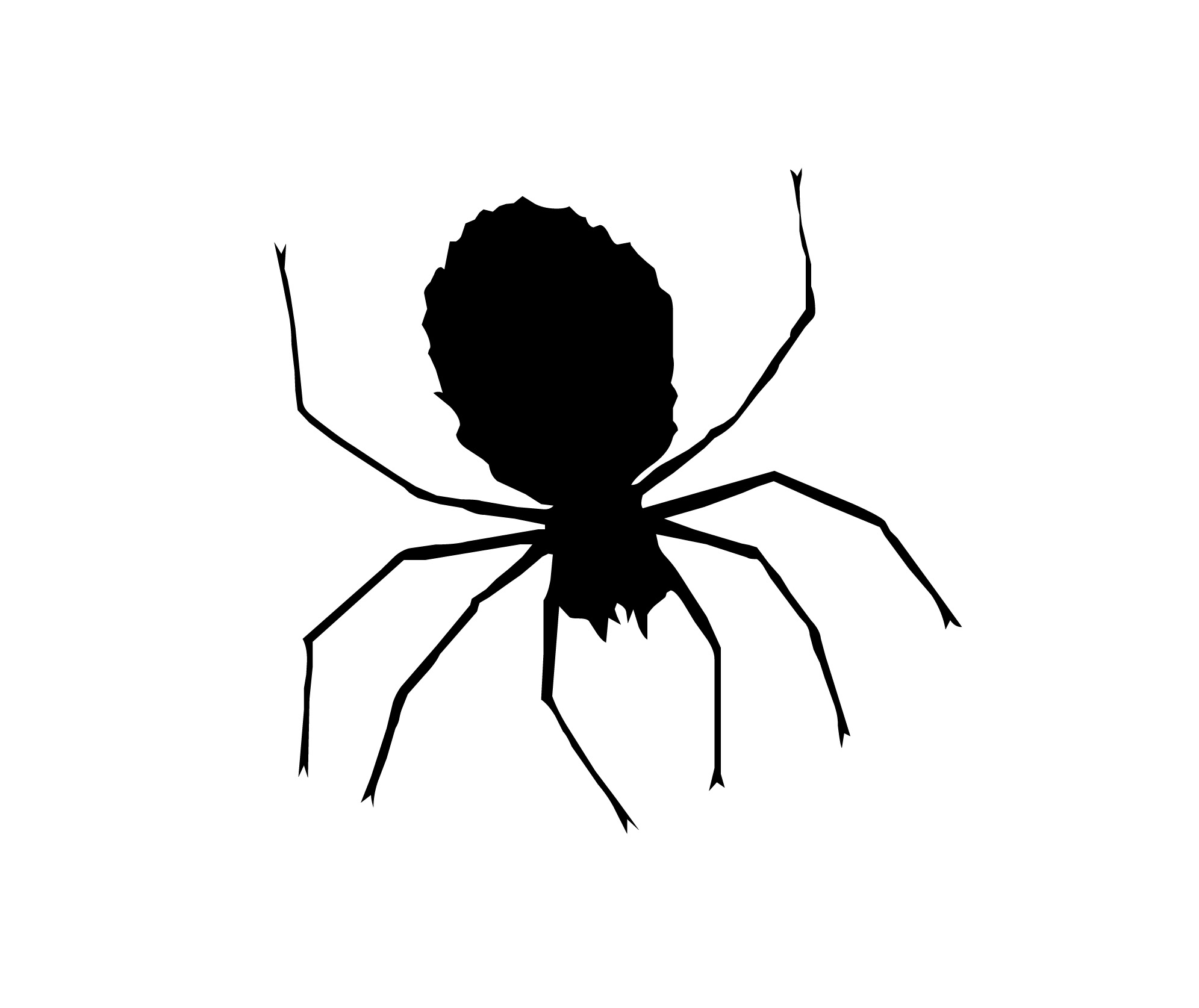 Spider Clipart Black And White.