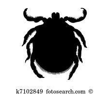 Arachnida Clip Art Illustrations. 71 arachnida clipart EPS vector.