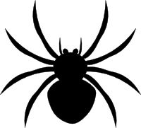 1000+ images about Spidery on Pinterest.