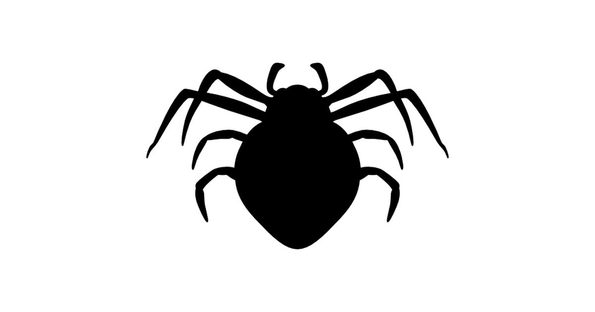 Spider arthropod animal silhouette.