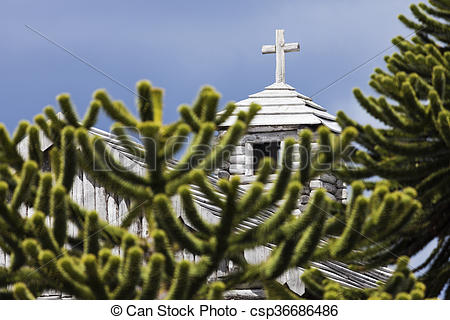 Pictures of Araucaria and church in Fort Bulnes, Chile.