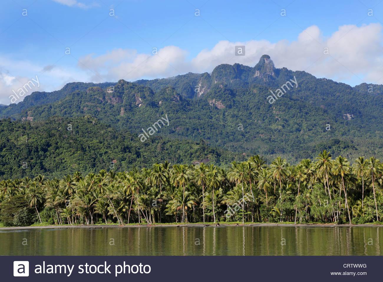 Coastline on the island of Bougainville near the city of Arawa.