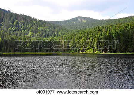 Picture of Lake Arber in Bavaria (Grosser Arbersee) k4001977.
