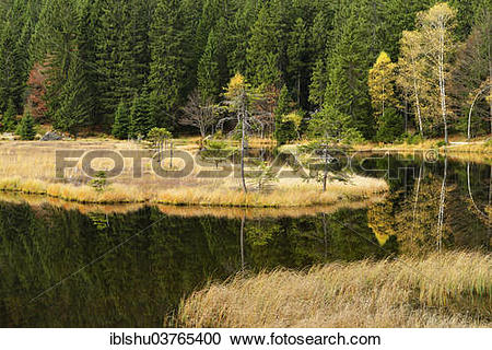 "Stock Photography of ""Autumn in the Naturschutzgebiet Kleiner."
