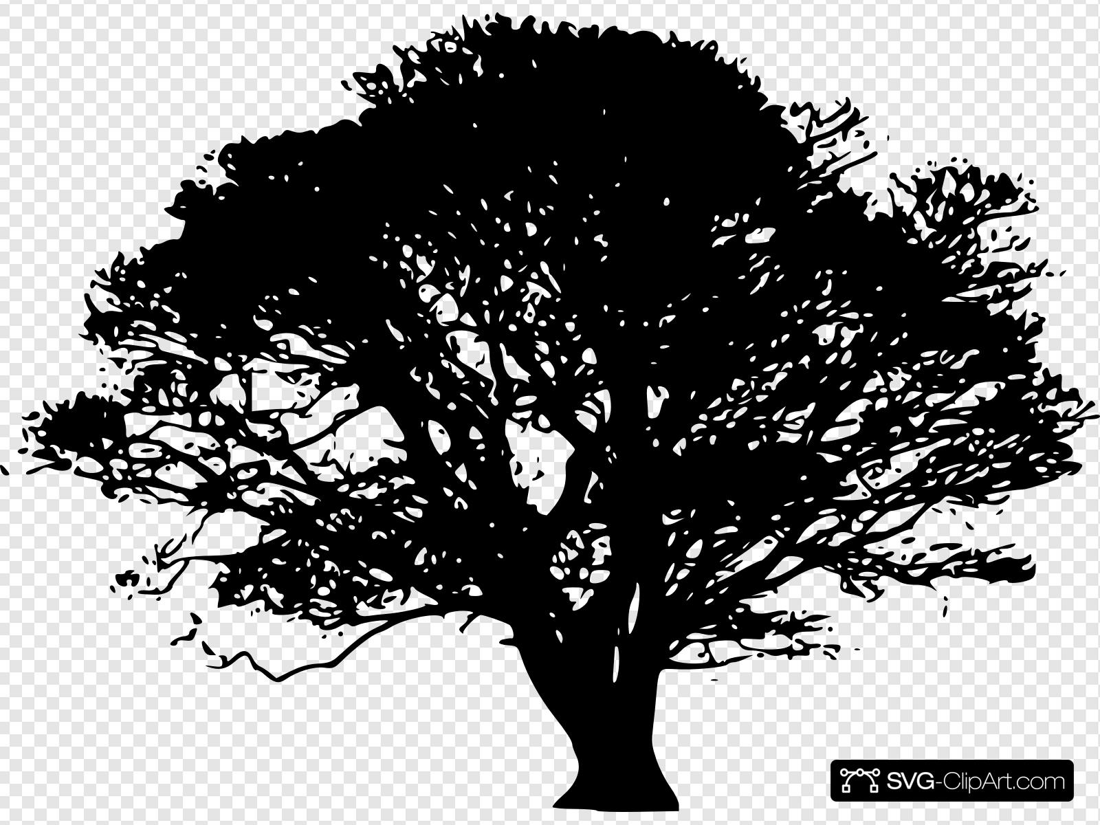 Arbol Clip art, Icon and SVG.