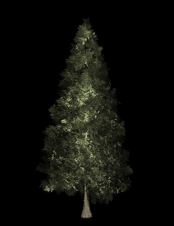 Cada Vez Mayor Árbol Navidad.