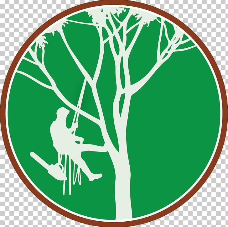 Tree Climbing Arborist Branch PNG, Clipart, Arborist, Area, Branch.