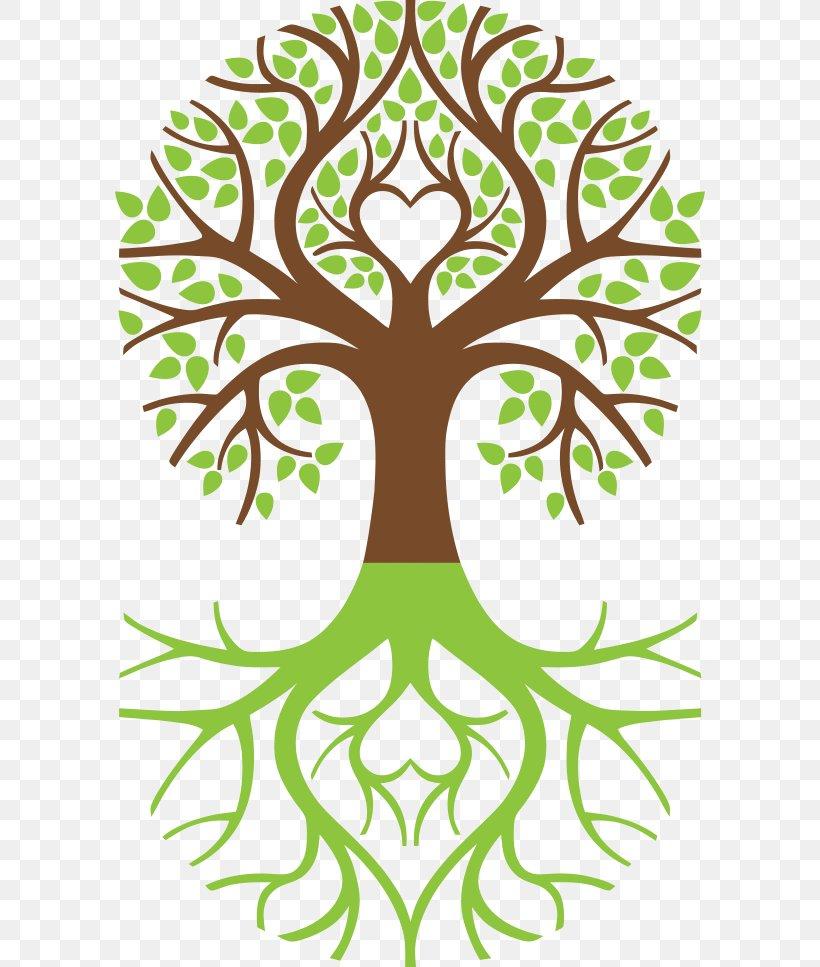 Tree Of Life Symbol Weeping Willow Arborvitae, PNG.