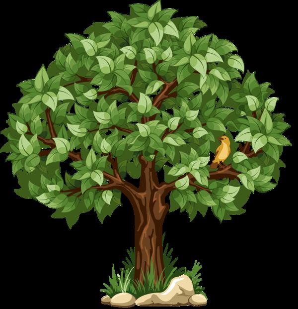 Клипарт#дерево#елка#clipart#elka#.