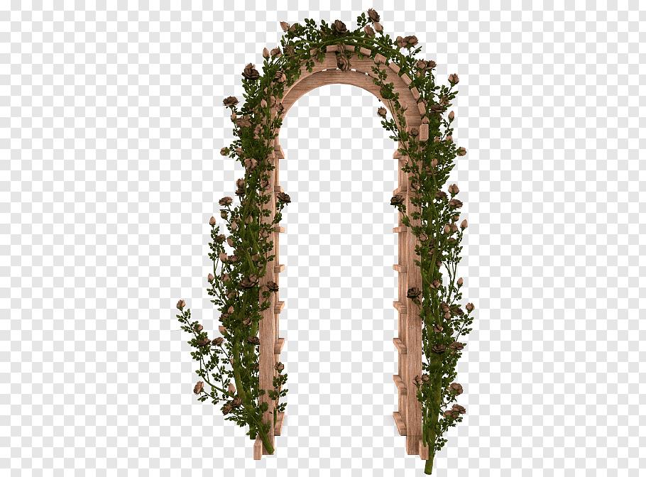 Rose Vine, Garden Roses, Flower, Flower Garden, Arch, Gate.