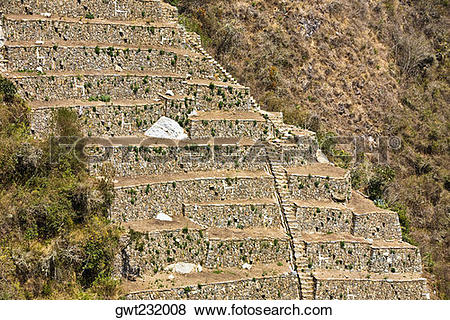 Pictures of Old ruins of steps in a forest, Choquequirao, Inca.