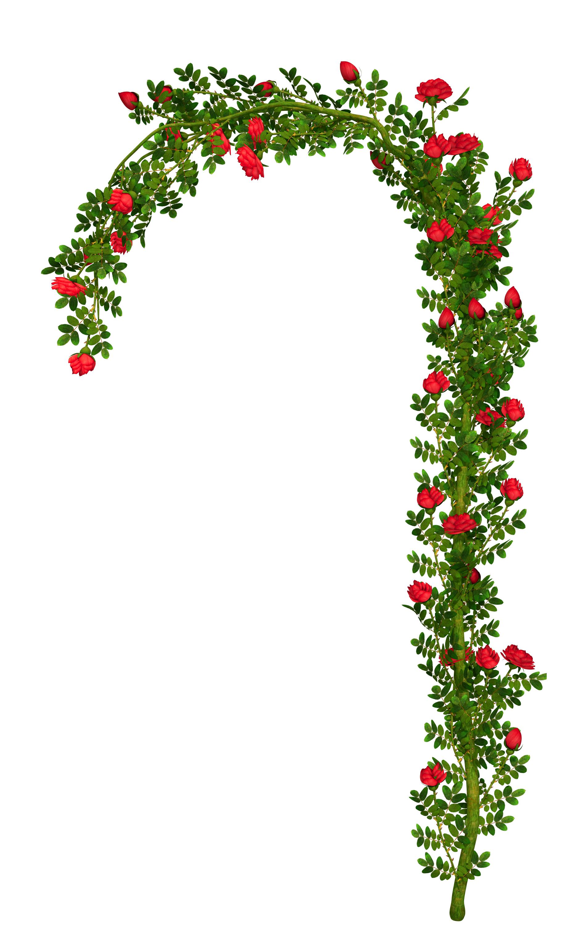 Rosebush Arch Element PNG Clipart Picture.
